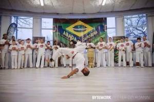gaviao-capoeira